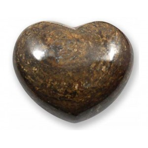 Heart, Bronzite